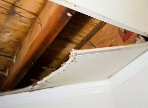 Water damage Fircrest